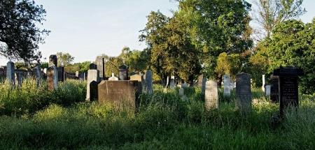Židovský hřbitov Kojetín_4
