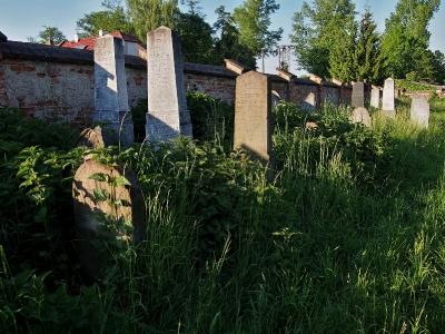Židovský hřbitov Kojetín_6