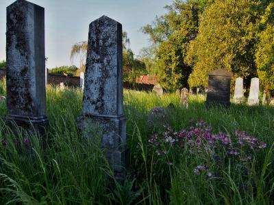 Židovský hřbitov Kojetín_7