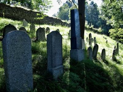 Židovský hřbitov Kolínec_3