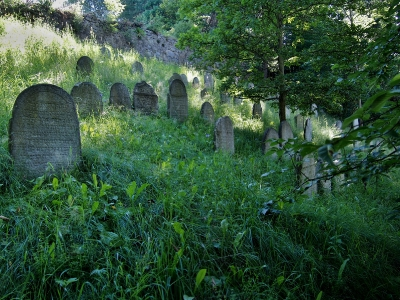 Židovský hřbitov Kolínec_7