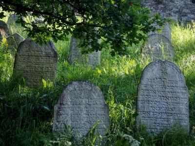 Židovský hřbitov Kolínec_8