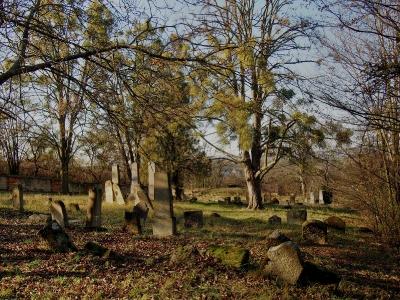 Židovský hřbitov Koryčany_2