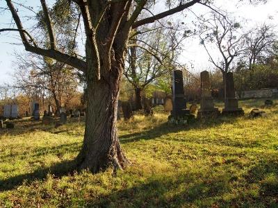 Židovský hřbitov Koryčany_7