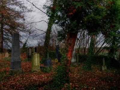 Židovský hřbitov Kostelec u Křížkůl_5