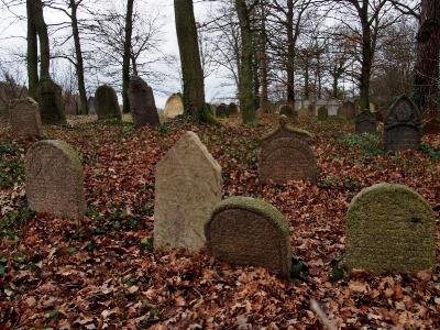 Židovský hřbitov Kostelec u Křížkůl_8