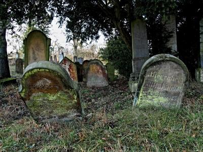 Židovský hřbitov Loštice - 3