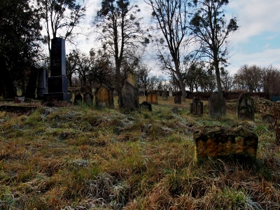 Židovský hřbitov Loštice_7