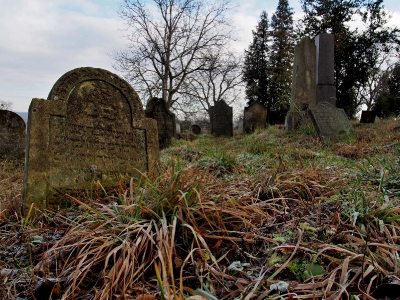 Židovský hřbitov Loštice_8