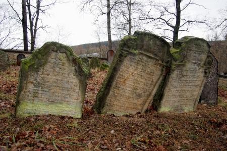 Židovský hřbitov Trhový Štěpánov_8