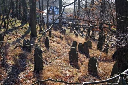 Židovský hřbitov v Kosově Hoře_100