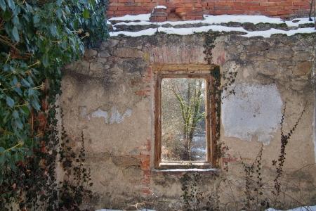 Židovský hřbitov v Kosově Hoře_11