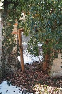 Židovský hřbitov v Kosově Hoře_12
