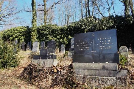 Židovský hřbitov v Kosově Hoře_14