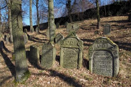 Židovský hřbitov v Kosově Hoře_19