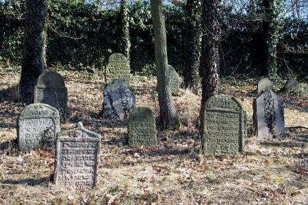 Židovský hřbitov v Kosově Hoře_20