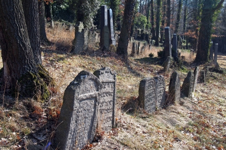 Židovský hřbitov v Kosově Hoře_21