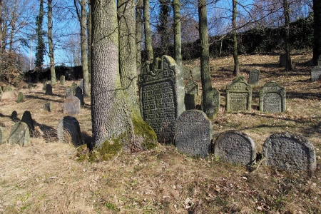 Židovský hřbitov v Kosově Hoře_22