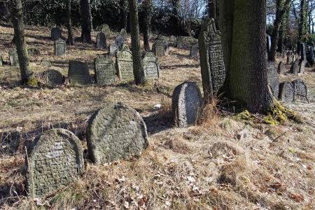 Židovský hřbitov v Kosově Hoře_24