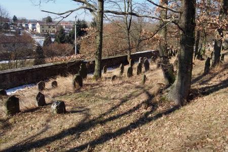 Židovský hřbitov v Kosově Hoře_28
