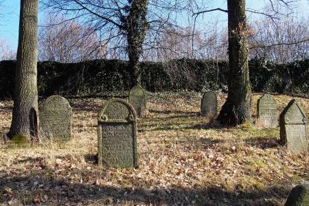 Židovský hřbitov v Kosově Hoře_29