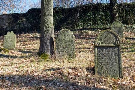 Židovský hřbitov v Kosově Hoře_30