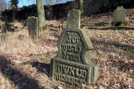 Židovský hřbitov v Kosově Hoře_31