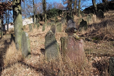 Židovský hřbitov v Kosově Hoře_32