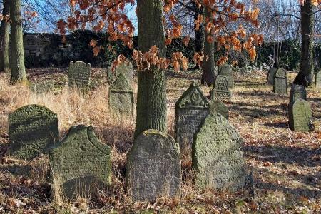 Židovský hřbitov v Kosově Hoře_34