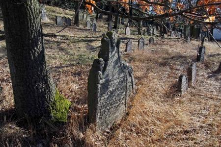 Židovský hřbitov v Kosově Hoře_35