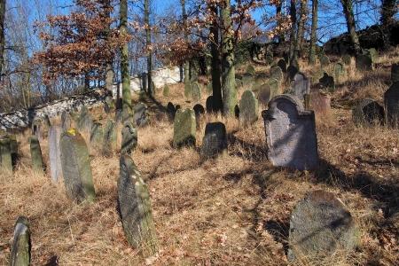 Židovský hřbitov v Kosově Hoře_36