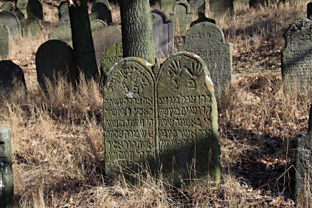 Židovský hřbitov v Kosově Hoře_37
