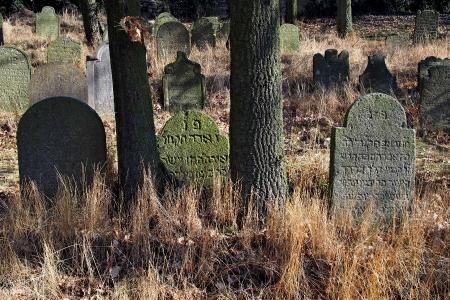 Židovský hřbitov v Kosově Hoře_38