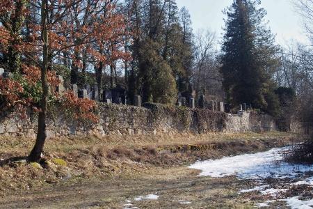 Židovský hřbitov v Kosově Hoře_3