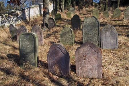 Židovský hřbitov v Kosově Hoře_42