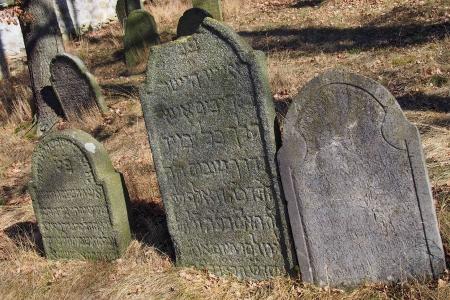 Židovský hřbitov v Kosově Hoře_45