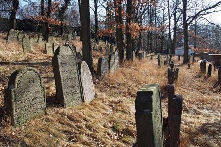 Židovský hřbitov v Kosově Hoře_46