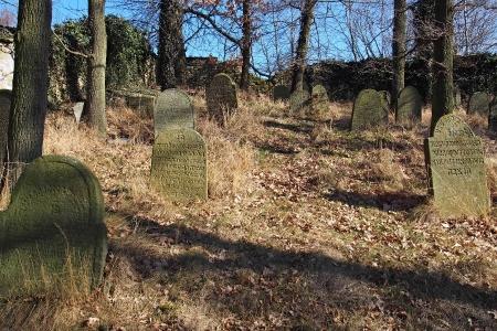 Židovský hřbitov v Kosově Hoře_47
