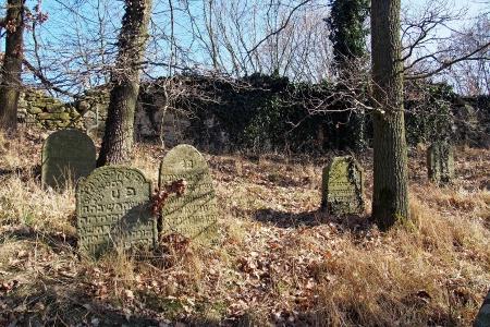 Židovský hřbitov v Kosově Hoře_49