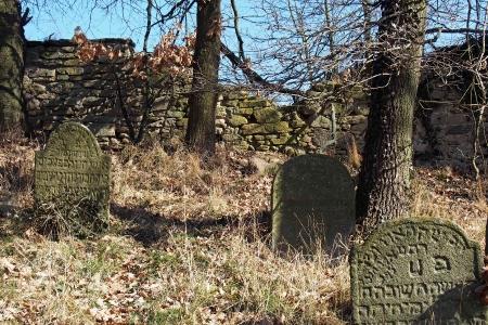 Židovský hřbitov v Kosově Hoře_50