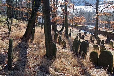 Židovský hřbitov v Kosově Hoře_51