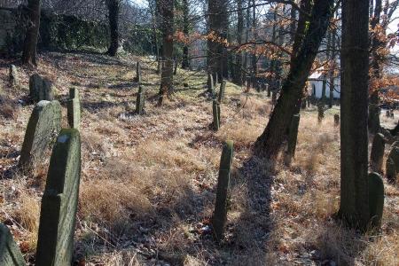 Židovský hřbitov v Kosově Hoře_52