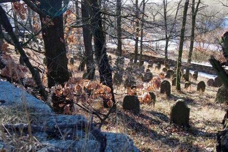 Židovský hřbitov v Kosově Hoře_53