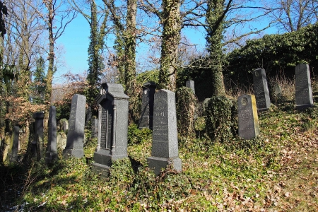 Židovský hřbitov v Kosově Hoře_55