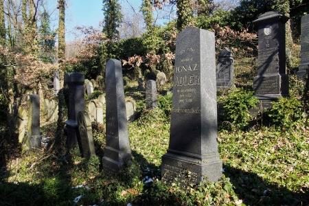 Židovský hřbitov v Kosově Hoře_58