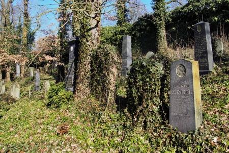 Židovský hřbitov v Kosově Hoře_59