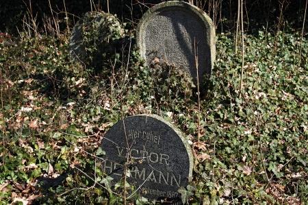 Židovský hřbitov v Kosově Hoře_61