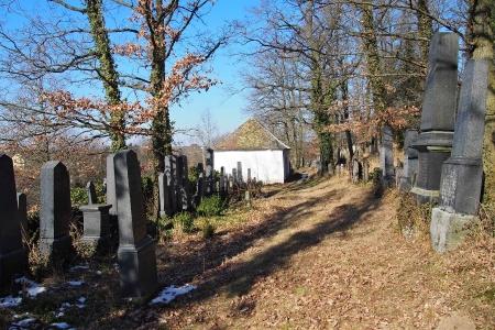 Židovský hřbitov v Kosově Hoře_64