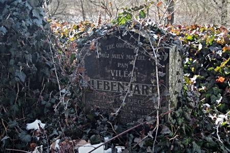 Židovský hřbitov v Kosově Hoře_66