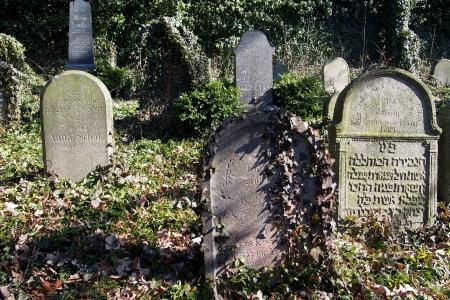 Židovský hřbitov v Kosově Hoře_68